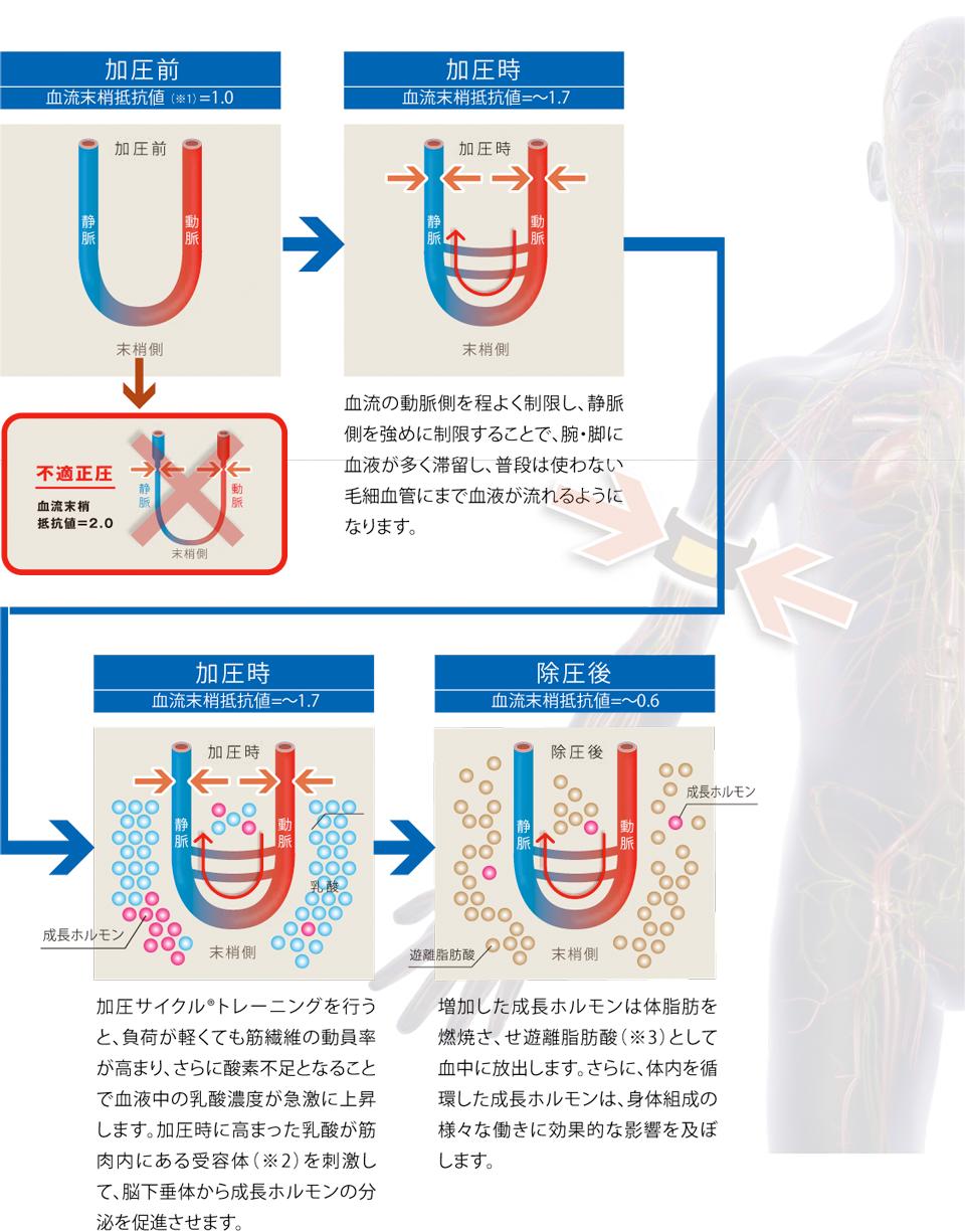加圧サイクル®トレーニングの仕組み イメージ